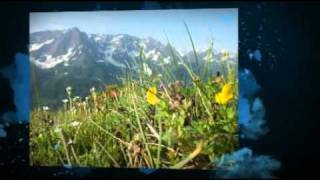 European Alps Lakes and Mountains - Lake Garda and Lake Lucerne