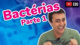 Reino monera bactérias parte 1 prof paulo jubilut 23 06