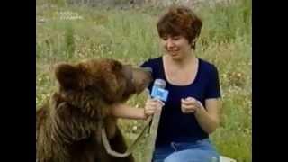 Медведь напал на журналистку