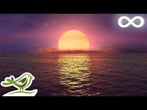 Relaxing Sleep : Ocean Waves Fall Asleep Fast Relaxing  Sleeping  ★146