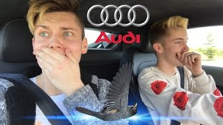 HE HIT A BIRD WITH HIS NEW CAR!!