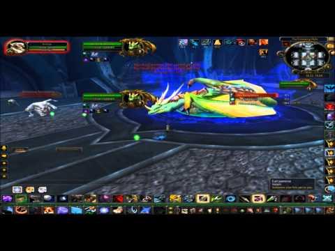 90 Hunter Solo: Valithria Dreamwalker
