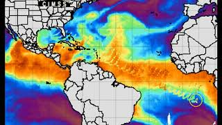 Massive Wave Anomaly Coming from US Gulf Cost Region