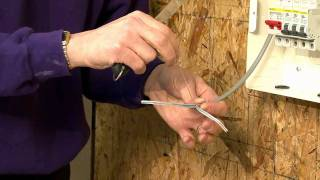 The Practical Skills Series : Cable Termination - Twin & CPC