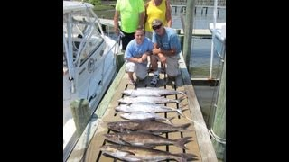 Teezher Charters Kings and Cobia half day 7 18 13