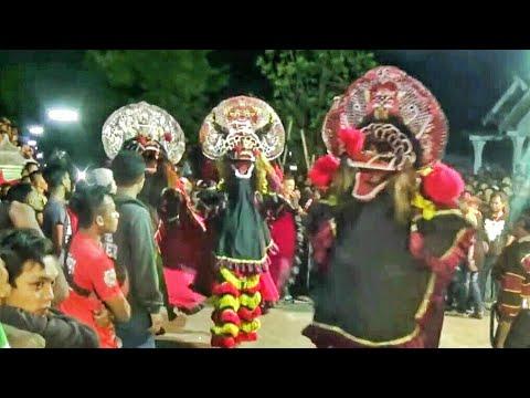 TAWURAN !!! SINGO BARONG DUEL dng PENONTON !!! KOCAR-KACIR !!! Rogo Samboyo Putro--Jaranan Terbaru