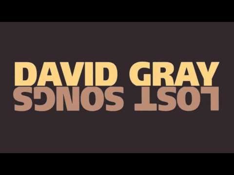 Gray, David - January Rain