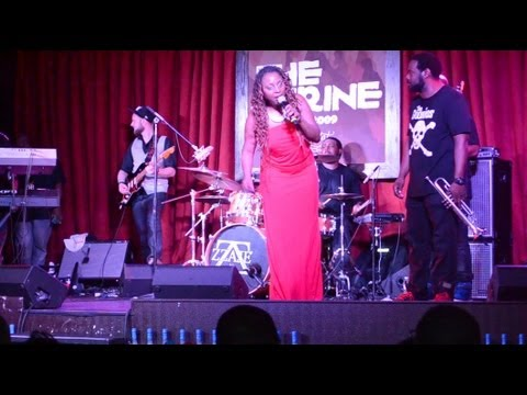 "LIVE! Ledisi Performs ""Goin' Thru Changes"" In Chicago 04-17-13"