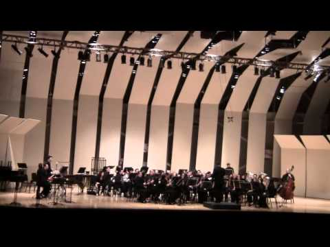 NASSAU SUFFOLK ALUMNI BAND @ CW POST TILLES CENTER 2 1 2013 RIVERDANCE  3 OF 3
