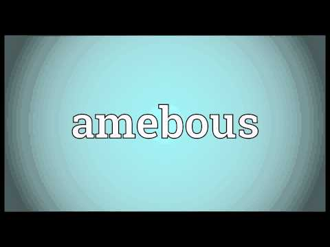 Header of Amebous