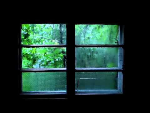 Rain Sound and Thunder - 2 Hours Sleep Meditation Sound