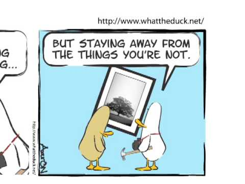 What the Duck Animated Comic Strip 761 Video