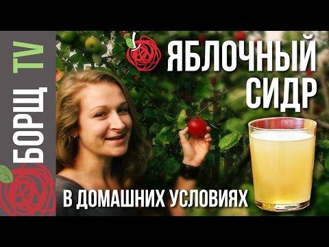 Сидр из сока в домашних условиях рецепт