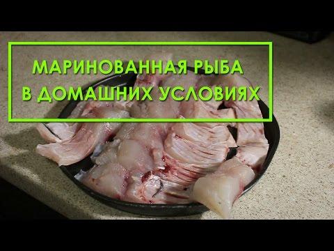 Маринованная рыба в домашних условиях (толстолобик, карп, скумбрия, селедь). Рецепт приготовления