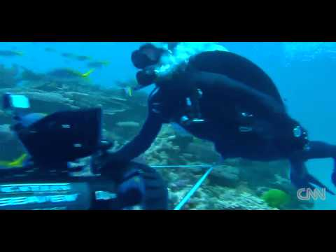 UNBELIEVABLE!!     Learning the Great Barrier Reef Amazing!!! - HD