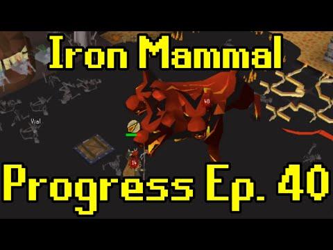 Oldschool Runescape - 2007 Iron Man Progress Ep. 40 | Iron Mammal