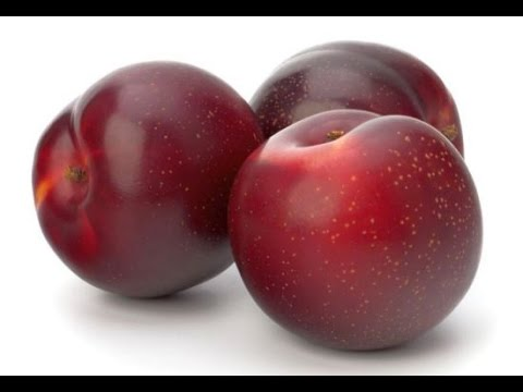 Ω (hd) Asmr - Eating A Sweet-ass Juicy Red Plum !! =p~~~~~ video