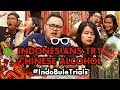 IndoBuleTrials: Indonesians Try Chinese Alcohol | Chinese New Year Edition!