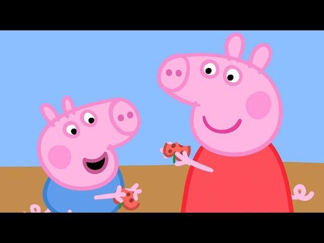 Peppa Pig Świnka Peppa po Polsku najlepsze odcinki -  Swinka Peppa Prace ogrodowe