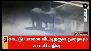 Wild elephant entering houses caught on CCTV camera