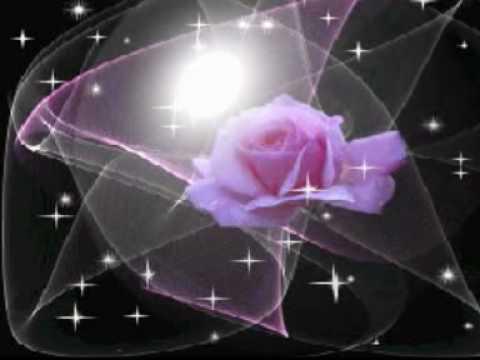 rosas de amor. Como rosas de un rosal en