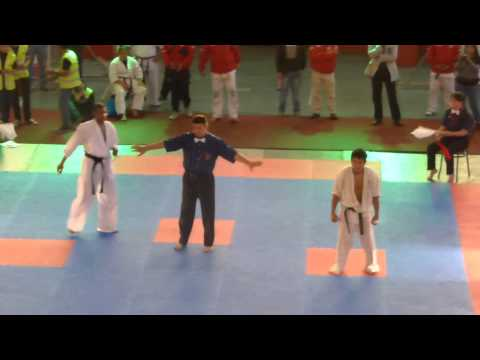 Kyokushin Karate Copa del Mundo (World Cup) Chile 2013 Image 1
