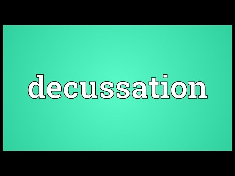 Header of decussation