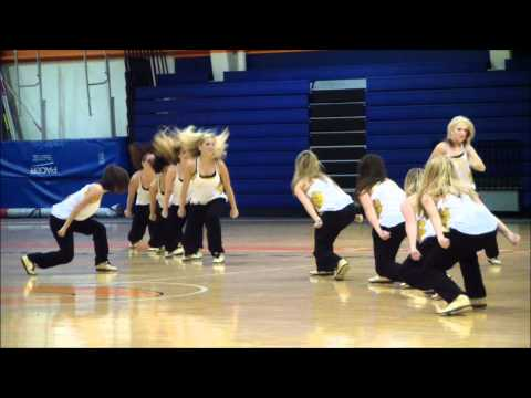 University of Wisconsin Milwaukee Panther Dance Team