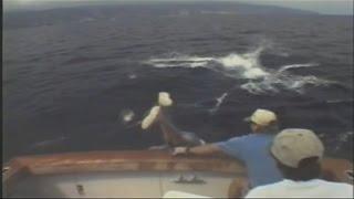 Прикол на рыбалке утащило рыбака
