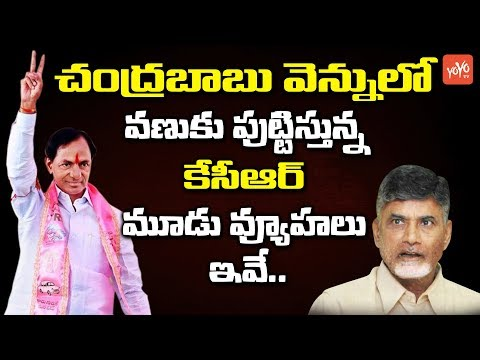 CM KCR Fears Chandrababu With His Master Plan | TRS | TDP | Telangana News | KTR | YOYO TV Channel
