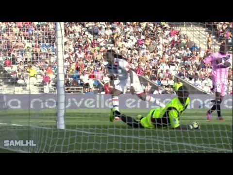 Bafétimbi Gomis | Panther | All Goals | 2012 2013