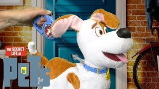 The Secret Life of Pets Best Friend Max Walking Talking Friend from Spin Master