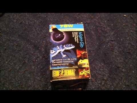 Product Review: Exo Terra Night Glo Neodymium Moonlight Lamp