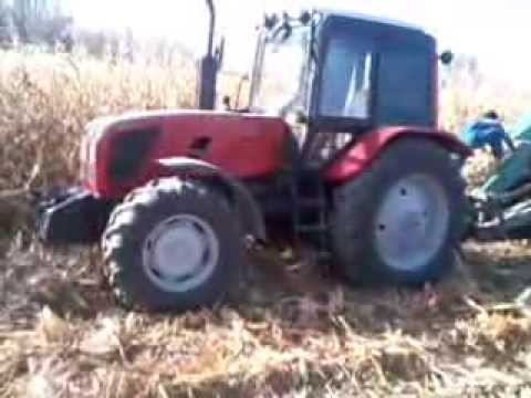 Belarus 1220.1+kkp9 corn harvest. МТЗ 1220,1 +ккп9 уборка кукурузы