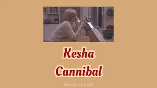 Download lagu 【和訳】Kesha - Cannibal