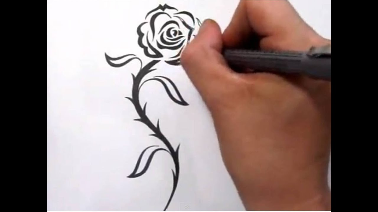Rose tattoos drawing a cool tribal tattoo design youtube for Cool rose drawings