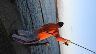 Fishing in South Shields. 8 fish on the rod :)