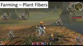 Efficient Plant Fiber Farm