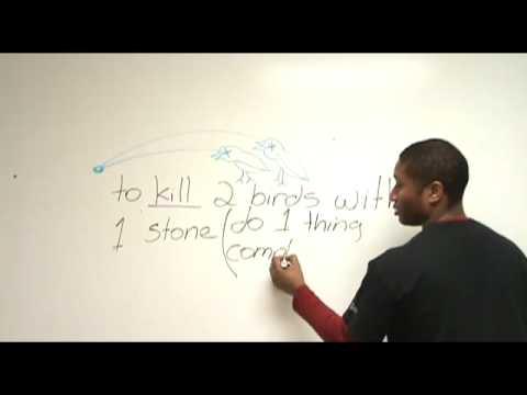Idioms in English: 'Bird'