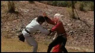 die 18 todesschläge der shaolin Final Fight
