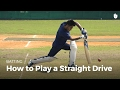 Download How to Play a Straight Drive   Cricket in Mp3, Mp4 and 3GP