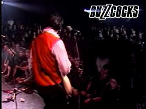 Buzzcocks - My Dreams