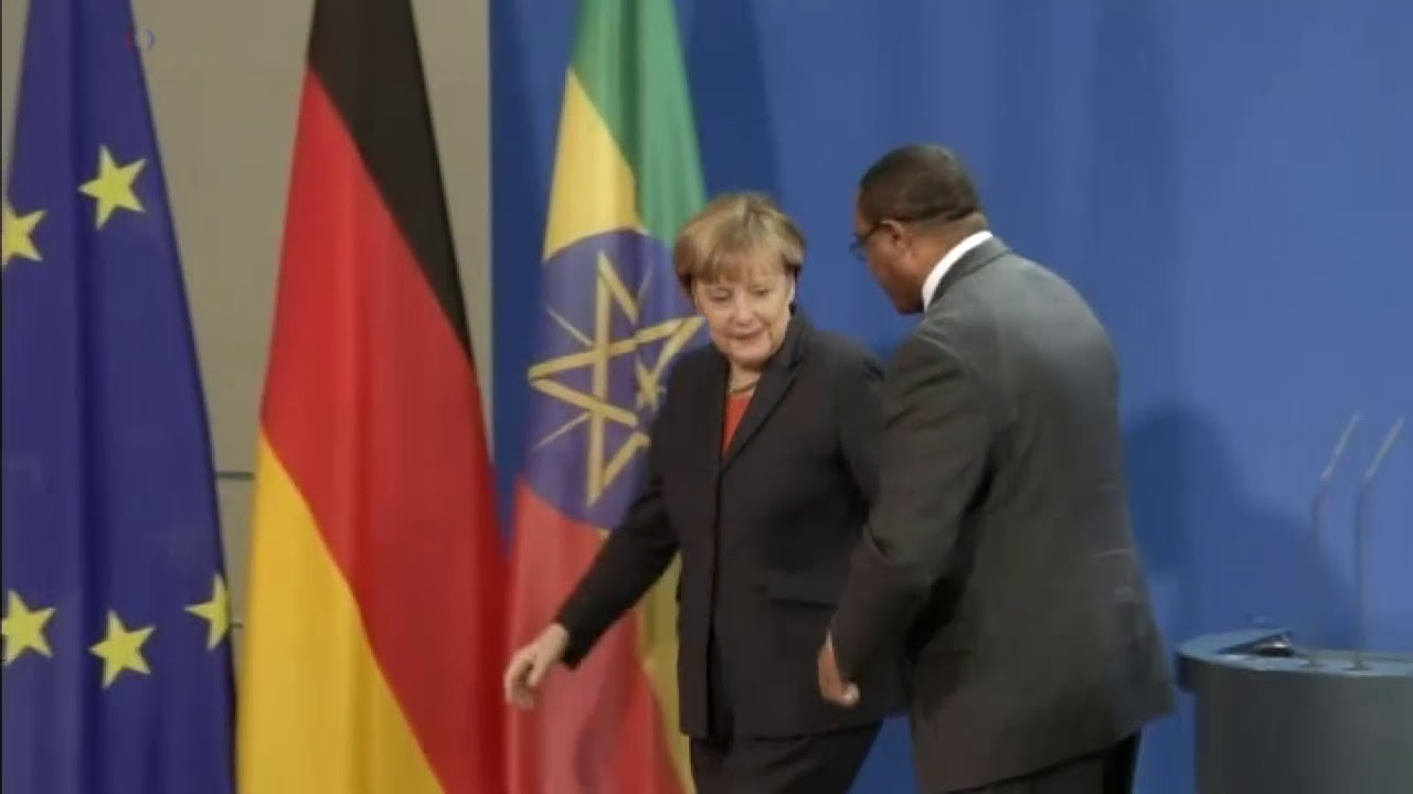 President Haile/Mariam Desalegn's Meeting With World Leaders at Various Times