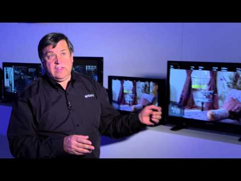 Information Overdrive: Sony Next Generation OLED Monitors