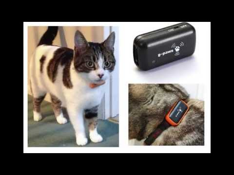 Jess The Cyber Cat, a talk on IOT cat flaps, feeders and trackers by Richard Loxley