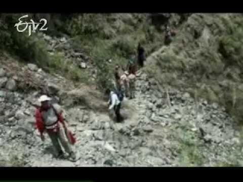 Government negligence caused the Himalayan tsunami