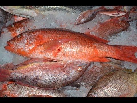 Pescado Frito Nicaragua Pescado Frito Nicaraguense