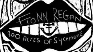 Watch Fionn Regan Dogwood Blossom video