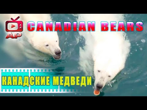 Breaking NEWS !♛♛♛ Russian off the coast of Canada!  ♛♛♛   Русские у берегов Канады !!! ♛♛♛