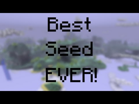 Best Seed for Minecraft 1.8.1